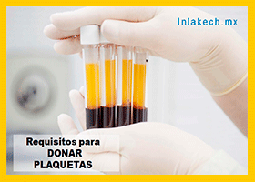 Requisitos para donar plaquetas