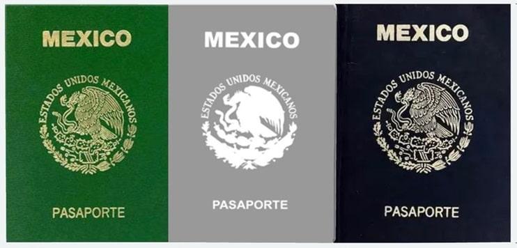 Tipos de pasaporte
